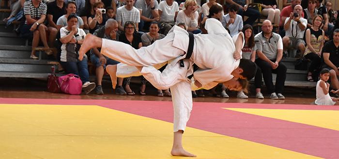 judo trèbes automne pavia