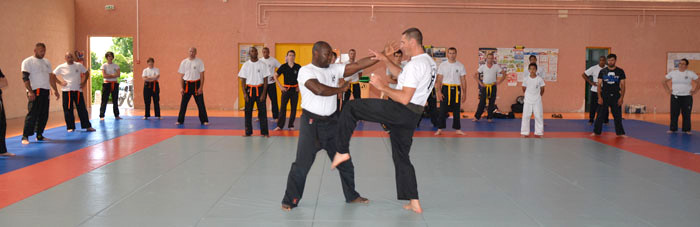 karate-juin2013