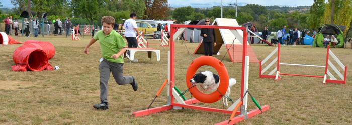 canin-agility sept2013-c