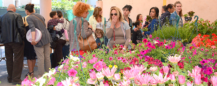 floralies-marché aux fleurs 2014