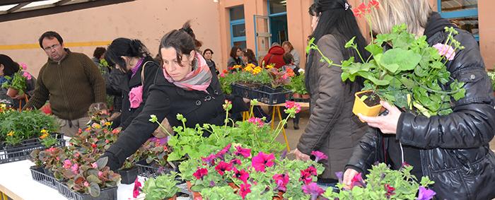 floralies-marché-auxfleurs2013-2