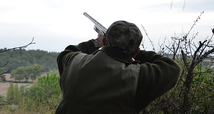 chasse 1
