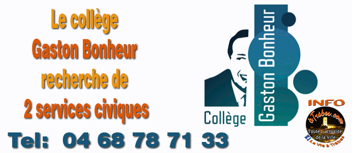 college service civique