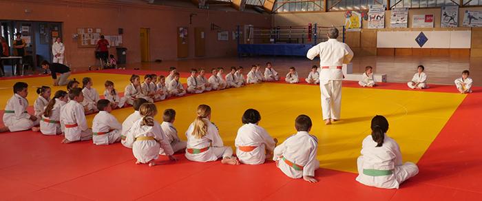 judo sumo
