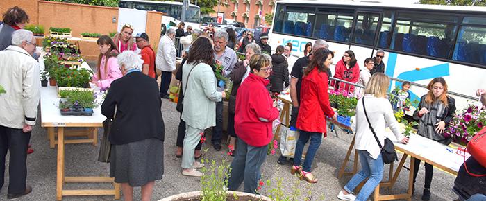 marché au fleurs Trèbes