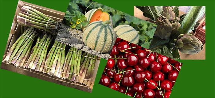 fruits et légumes jacques Pujol Trèbes